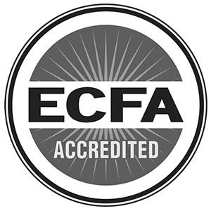 ecfa-grey-logo